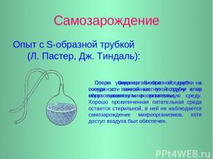 Самозарождение Опыт с S-образной трубкой (Л. Пастер, Дж. Тиндаль): Споры микроор