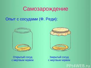 Самозарождение Опыт с сосудами (Ф. Реди): Открытый сосуд с мертвым червем Закрыт
