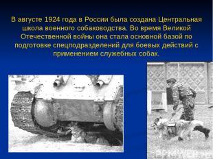 В августе 1924 года в России была создана Центральная школа военного собаководст