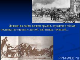 Лошади на войне возили орудия, служили в обозах, носились по степям с легкой, ка