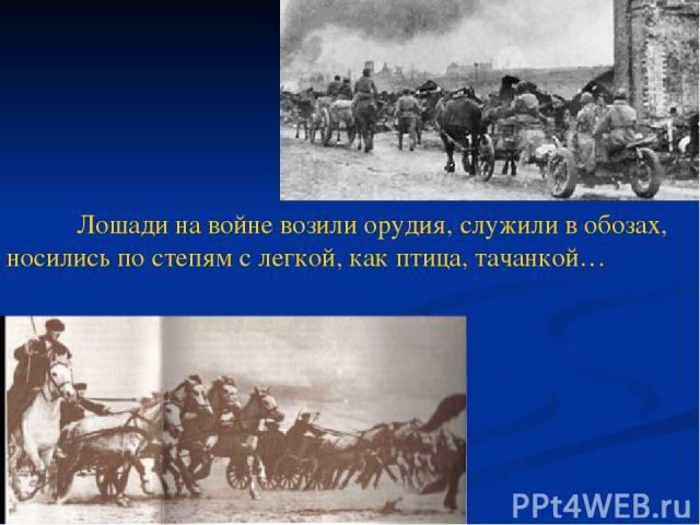 Лошади на войне возили орудия, служили в обозах, носились по степям с легкой, как птица, тачанкой…