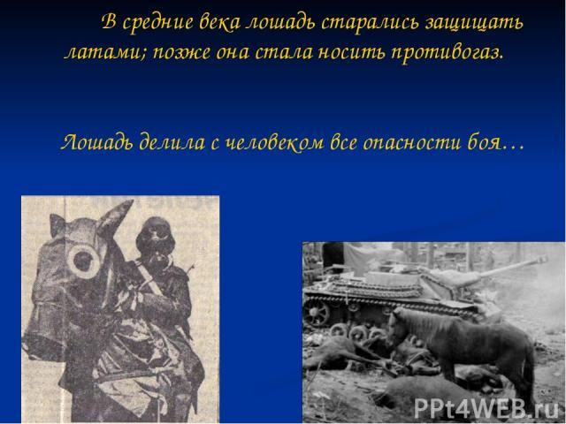 В средние века лошадь старались защищать латами; позже она стала носить противогаз. Лошадь делила с человеком все опасности боя…