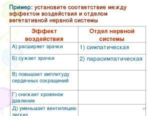 * Пример: установите соответствие между эффектом воздействия и отделом вегетатив