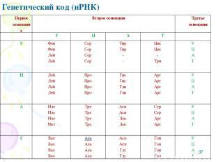 * Генетический код (иРНК) Первое основание Второе основание Третье основание У Ц