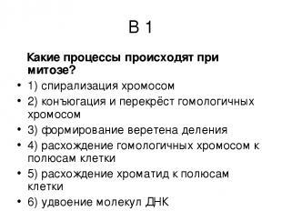 В 1 Какие процессы происходят при митозе? 1) спирализация хромосом 2) конъюгация