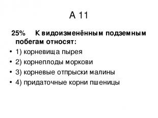 А 11 25% К видоизменённым подземным побегам относят: 1) корневища пырея 2) корне