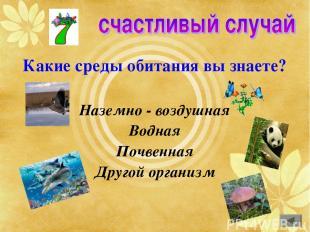 Какие среды обитания вы знаете? Наземно - воздушная Водная Почвенная Другой орга