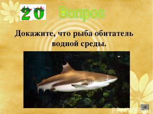 Докажите, что рыба обитатель водной среды.