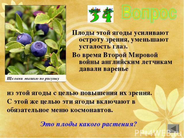 Плоды этой ягоды усиливают остроту зрения, уменьшают усталость глаз. Во время Второй Мировой войны английским летчикам давали варенье из этой ягоды с целью повышения их зрения. С этой же целью эти ягоды включают в обязательное меню космонавтов. Щелк…