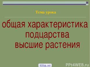 Тема урока 900igr.net
