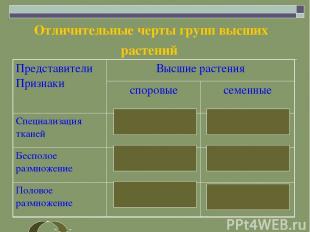Отличительные черты групп высших растений Представители Признаки Высшие растения