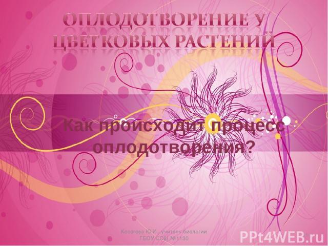 Как происходит процесс оплодотворения? * Косогова Ю.И., учитель биологии ГБОУ СОШ №1130 Косогова Ю.И., учитель биологии ГБОУ СОШ №1130