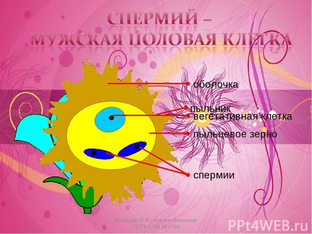 * Косогова Ю.И., учитель биологии ГБОУ СОШ №1130 Косогова Ю.И., учитель биологии ГБОУ СОШ №1130