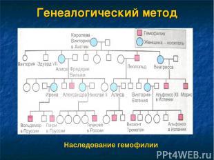 Генеалогический метод Наследование гемофилии
