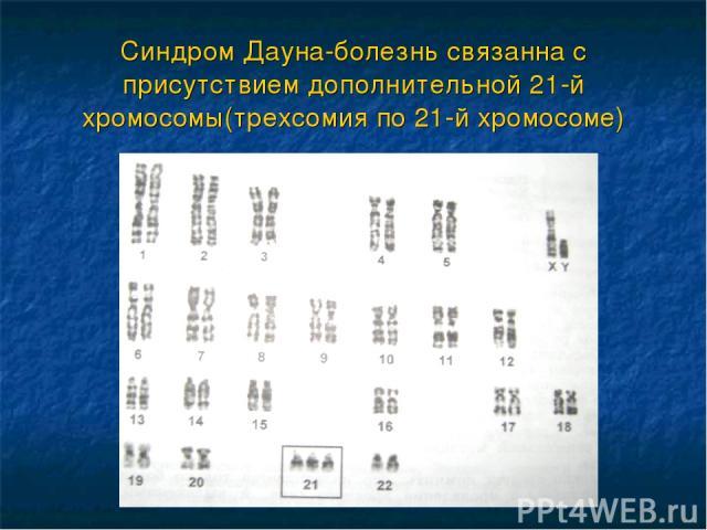 Синдром Дауна-болезнь связанна с присутствием дополнительной 21-й хромосомы(трехсомия по 21-й хромосоме)