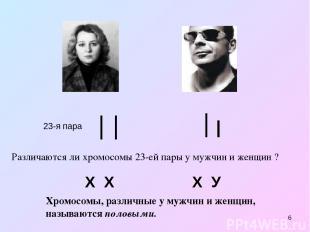 * 23-я пара Х Х Х У Различаются ли хромосомы 23-ей пары у мужчин и женщин ? Хром