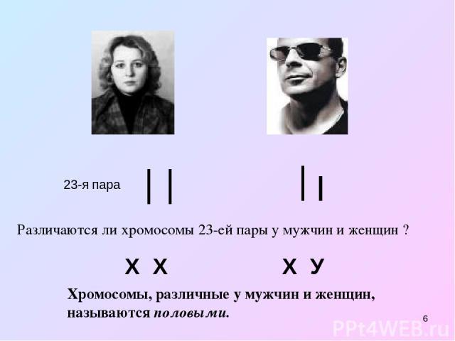 * 23-я пара Х Х Х У Различаются ли хромосомы 23-ей пары у мужчин и женщин ? Хромосомы, различные у мужчин и женщин, называются половыми.