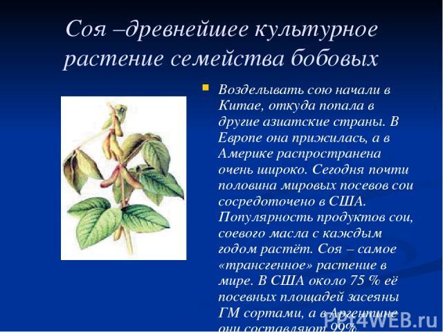 Соя –древнейшее культурное растение семейства бобовых Возделывать сою начали в Китае, откуда попала в другие азиатские страны. В Европе она прижилась, а в Америке распространена очень широко. Сегодня почти половина мировых посевов сои сосредоточено …