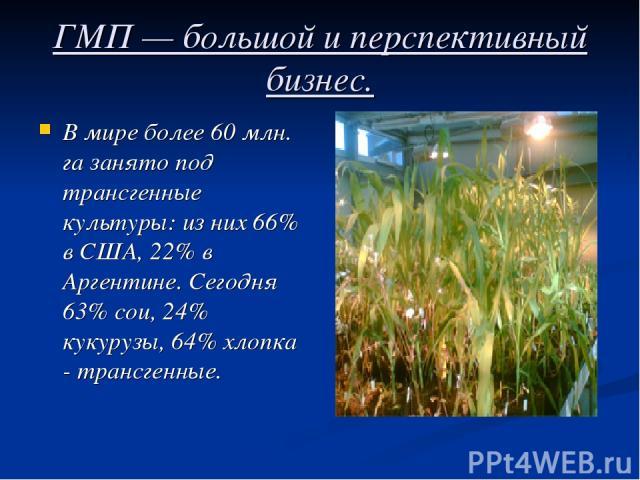 ГМП — большой и перспективный бизнес. В мире более 60 млн. га занято под трансгенные культуры: из них 66% в США, 22% в Аргентине. Сегодня 63% сои, 24% кукурузы, 64% хлопка - трансгенные.