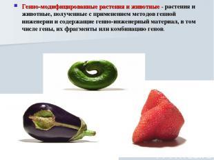 Генно-модифицированные растения и животные - растения и животные, полученные с п