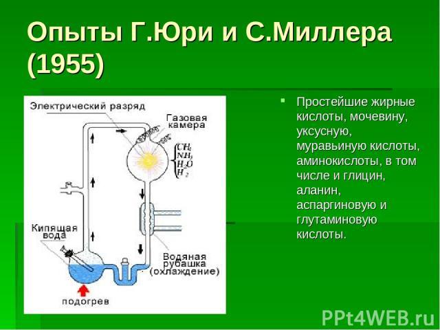 Опыты Г.Юри и С.Миллера (1955) Простейшие жирные кислоты, мочевину, уксусную, муравьиную кислоты, аминокислоты, в том числе и глицин, аланин, аспаргиновую и глутаминовую кислоты.