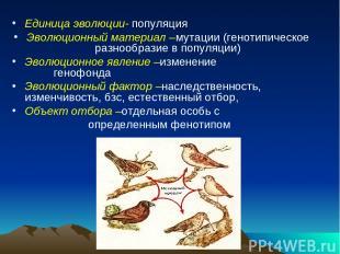 Единица эволюции- популяция Эволюционный материал –мутации (генотипическое разно