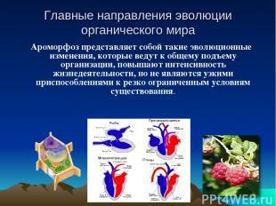 Главные направления эволюции органического мира Ароморфоз представляет собой так