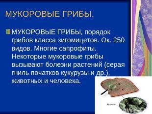 МУКОРОВЫЕ ГРИБЫ. МУКОРОВЫЕ ГРИБЫ, порядок грибов класса зигомицетов. Ок. 250 вид