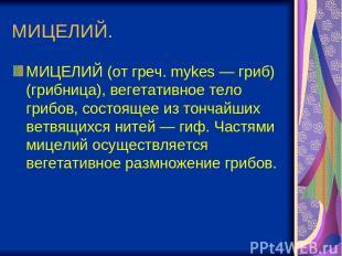 МИЦЕЛИЙ. МИЦЕЛИЙ (от греч. mykes — гриб) (грибница), вегетативное тело грибов, с