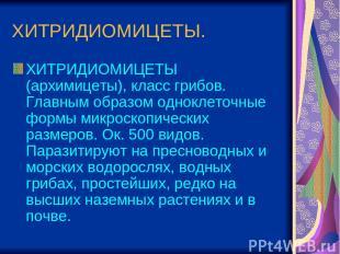 ХИТРИДИОМИЦЕТЫ. ХИТРИДИОМИЦЕТЫ (архимицеты), класс грибов. Главным образом однок