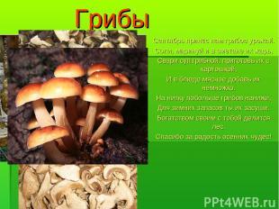 Грибы Сентябрь принёс нам грибов урожай. Соли, маринуй и в сметане их жарь, Свар