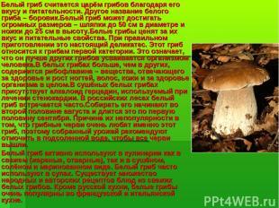 Белый гриб считается царём грибов благодаря его вкусу и питательности. Другое на