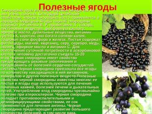 Полезные ягоды Смородина одна из самых вкусных ягод,а так же она очень полезна.