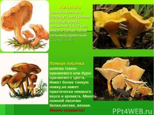 Ложная лисичка шляпка темно-оранжевого или буро-оранжевого цвета. Имеет более то