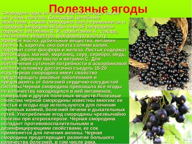 Полезные ягоды Смородина одна из самых вкусных ягод,а так же она очень полезна. Благодаря целебным свойствам, черная смородина часто применяется в народной медицине.Ягоды черной смородины содержат витамины В, Р, провитамин А , сахара, пектиновые вещ…