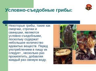 Условно-съедобные грибы: Некоторые грибы, такие как сморчки, строчки и свинушки,