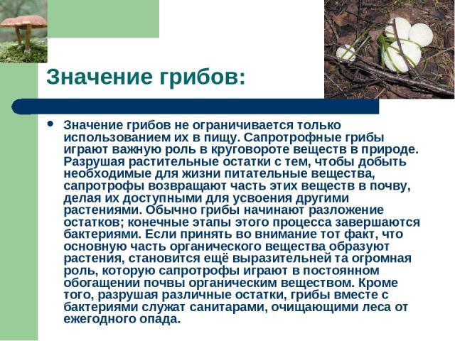 Значение грибов: Значение грибов не ограничивается только использованием их в пищу. Сапротрофные грибы играют важную роль в круговороте веществ в природе. Разрушая растительные остатки с тем, чтобы добыть необходимые для жизни питательные вещества, …