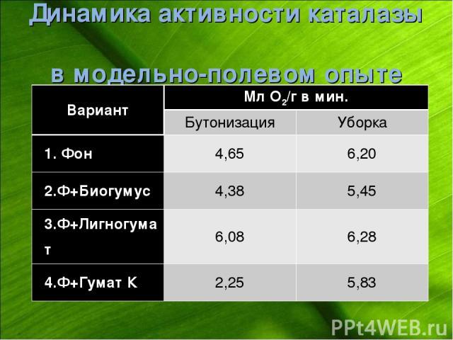 Динамика активности каталазы в модельно-полевом опыте Вариант Мл О2/г в мин. Бутонизация Уборка 1. Фон 4,65 6,20 2.Ф+Биогумус 4,38 5,45 3.Ф+Лигногумат 6,08 6,28 4.Ф+Гумат К 2,25 5,83
