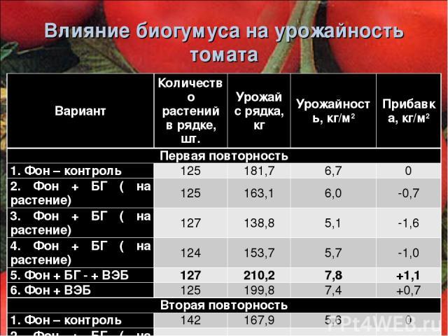 Влияние биогумуса на урожайность томата Вариант Количество растений в рядке, шт. Урожай с рядка, кг Урожайность, кг/м2 Прибавка, кг/м2 Первая повторность 1. Фон – контроль 125 181,7 6,7 0 2. Фон + БГ ( на растение) 125 163,1 6,0 -0,7 3. Фон + БГ ( н…
