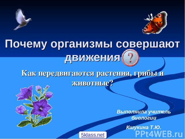 Как передвигаются растения, грибы и животные? Выполнила учитель биологии Кшукина Т.Ю. Почему организмы совершают движения 5klass.net