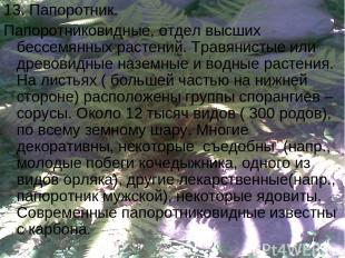 13. Папоротник. Папоротниковидные, отдел высших бессемянных растений. Травянисты