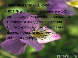 1.Анютины глазки(Виола) АНЮТИНЫ ГЛАЗКИ - травянистое 1-2-летнее растение семейст