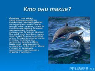 Кто они такие? Дельфины – это водные млекопитающие, семейства дельфиновых подотр
