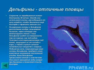 Дельфины - отличные пловцы Скорость их передвижения может достигать 55 км/час. И