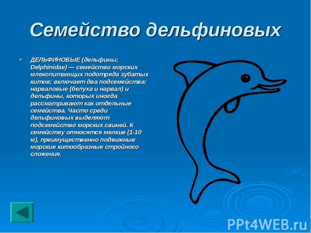 Семейство дельфиновых ДЕЛЬФИНОВЫЕ (дельфины; Delphinidae) — семейство морских млекопитающих подотряда зубатых китов; включает два подсемейства: нарваловые (белуха и нарвал) и дельфины, которых иногда рассматривают как отдельные семейства. Часто сред…