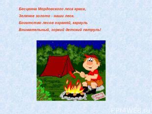 Бесценна Мордовского леса краса, Зеленое золото - наши леса. Богатство лесов охр