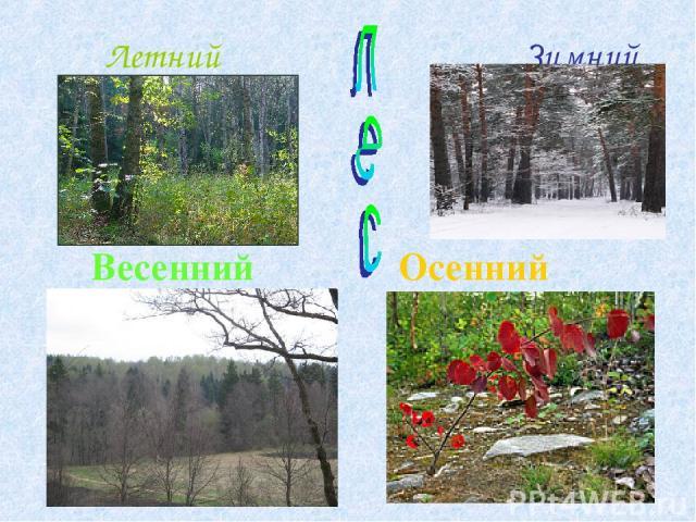Летний Зимний Весенний Осенний