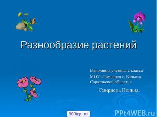 Разнообразие растений Выполнила ученица 2 класса МОУ «Гимназия г. Вольска Сарато
