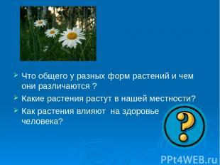 Что общего у разных форм растений и чем они различаются ? Какие растения растут