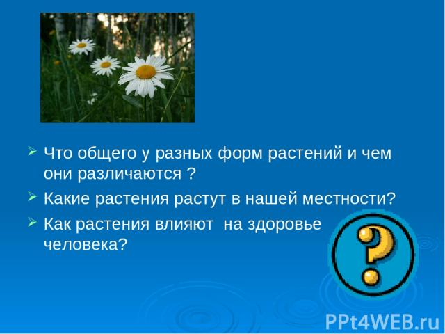 Что общего у разных форм растений и чем они различаются ? Какие растения растут в нашей местности? Как растения влияют на здоровье человека?
